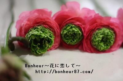 http://bonheur87.com/