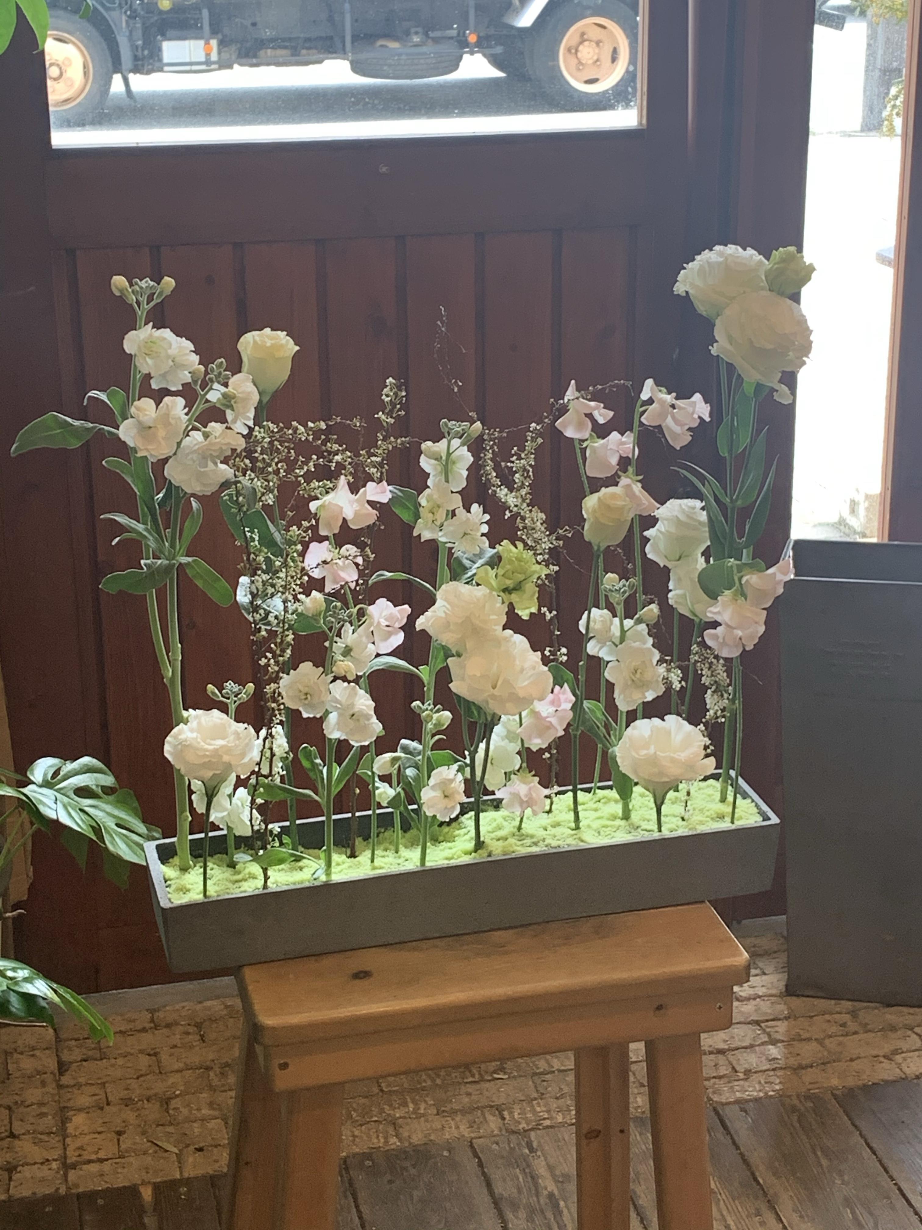 フリーレッスン2月は春の花束;